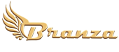 Branza - Web Design & Marketing Services