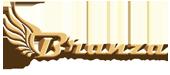 Branza - Web Design & Marketing Services
